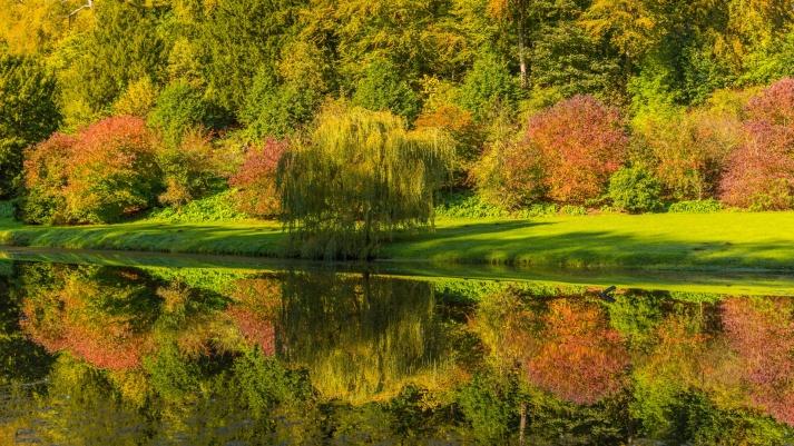 autumn-trees-reflection-1455361956bwE.jpg